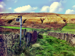 View of the surrounding high moorland from the Holme Moss climb